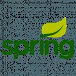 programista-spring